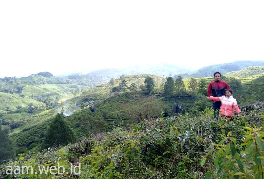 Wisata Alam Tasikmalaya Bukit Kacapi, Menikmati Indahnya Alam Perbukitan