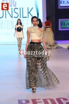 Elan-PFDC-Sunsilk-Fashion-Week-2014-PSFW2014-ebuzztoday-75