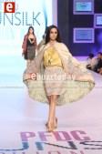 Shehla-Chatoor-pfdc-sunsilk-fashion-week-psfw2014-ebuzztoday-38