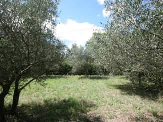 Bouwkavel-Uzes-Gard-0005