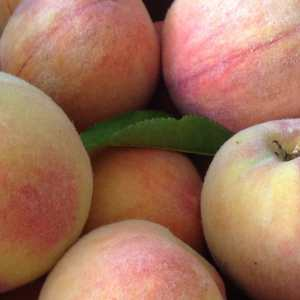 Fill up your whole hand white peaches.