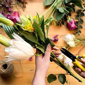 Florist Choice Best Sellers