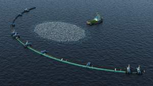 Pacific Garbage Patch, trawl