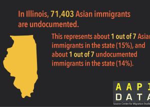 Infographic: AA Undocumented IL  (2015)