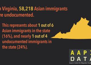 Infographic: AA Undocumented VA  (2015)