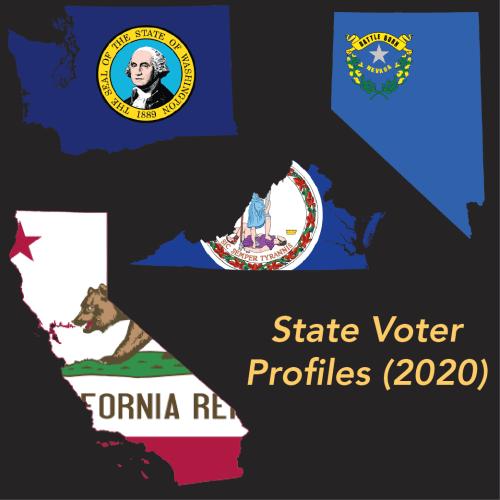 State Voter Profiles
