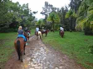 Horseback riding in Kilauea, Kauai, Hawaii.