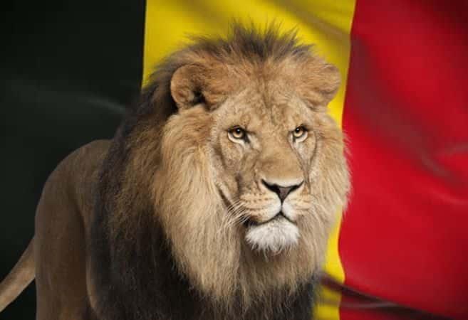 De leeuw van België