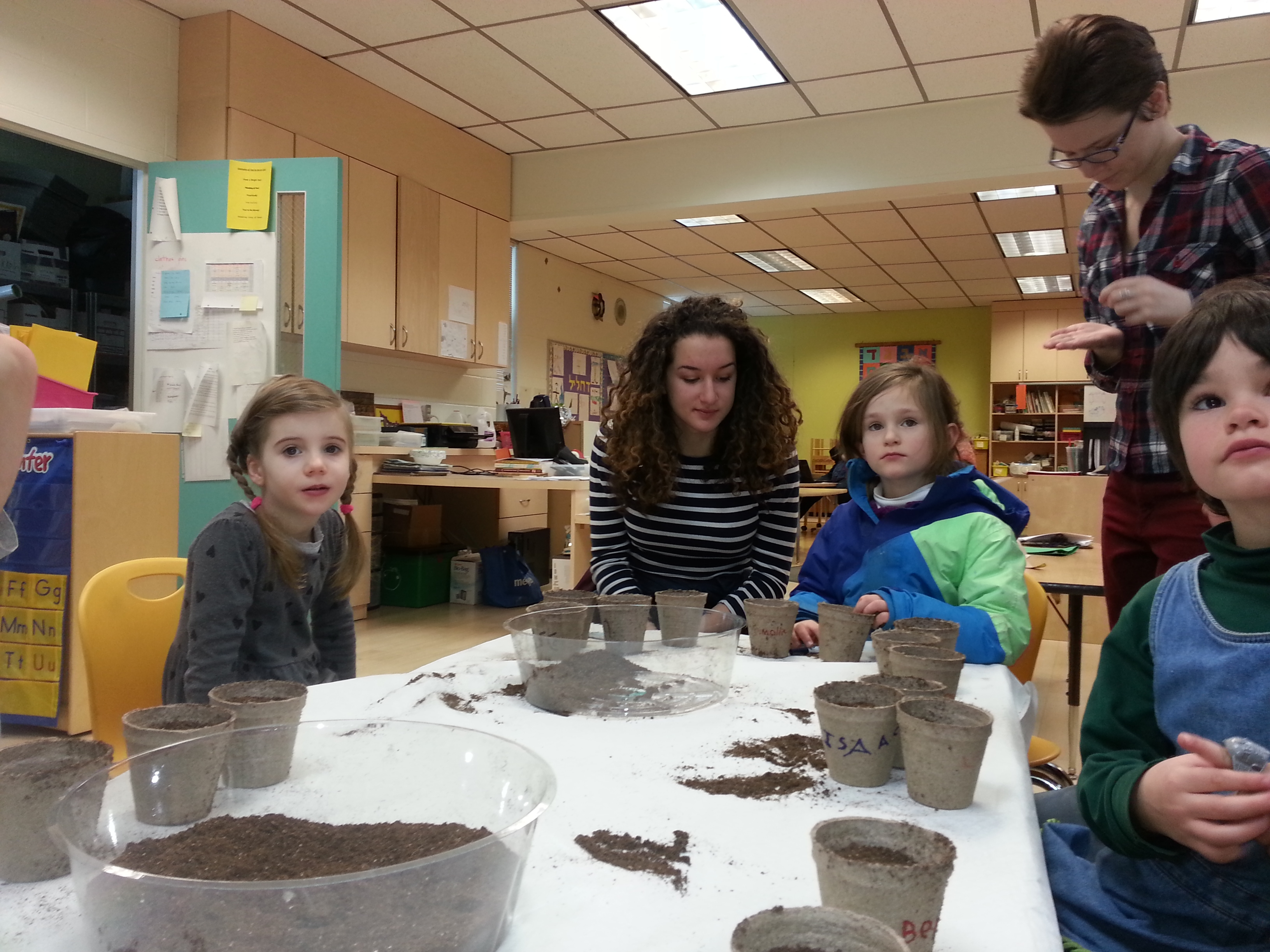 Planting parsley at Tu b'Shevat -- to be ready for Passover