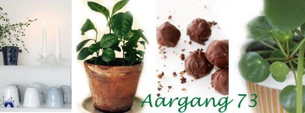 Aargang73 - kontakt