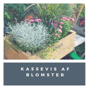 Kassevis af blomster