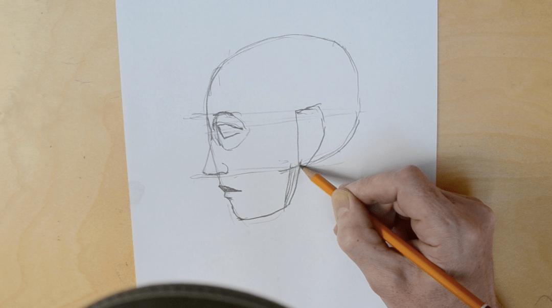 Tegn et hoved i profil