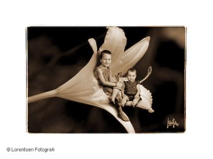 aarhus-fotograf-tinybaby-001
