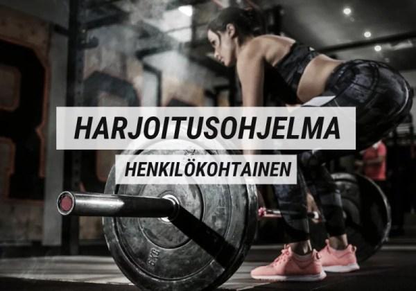 Harjoitusohjelma