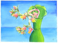 Suclents with Green Vase, 2009, water color paints and pencils on high Gsm Paper, By Aaron O'Brien. For Sale