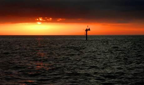 St. Pete's Sunset