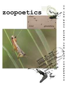 moe-zoopoetics