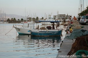 The fishing boats start to arrive