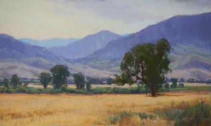 """""""Tejon Ranch, CA"""""""