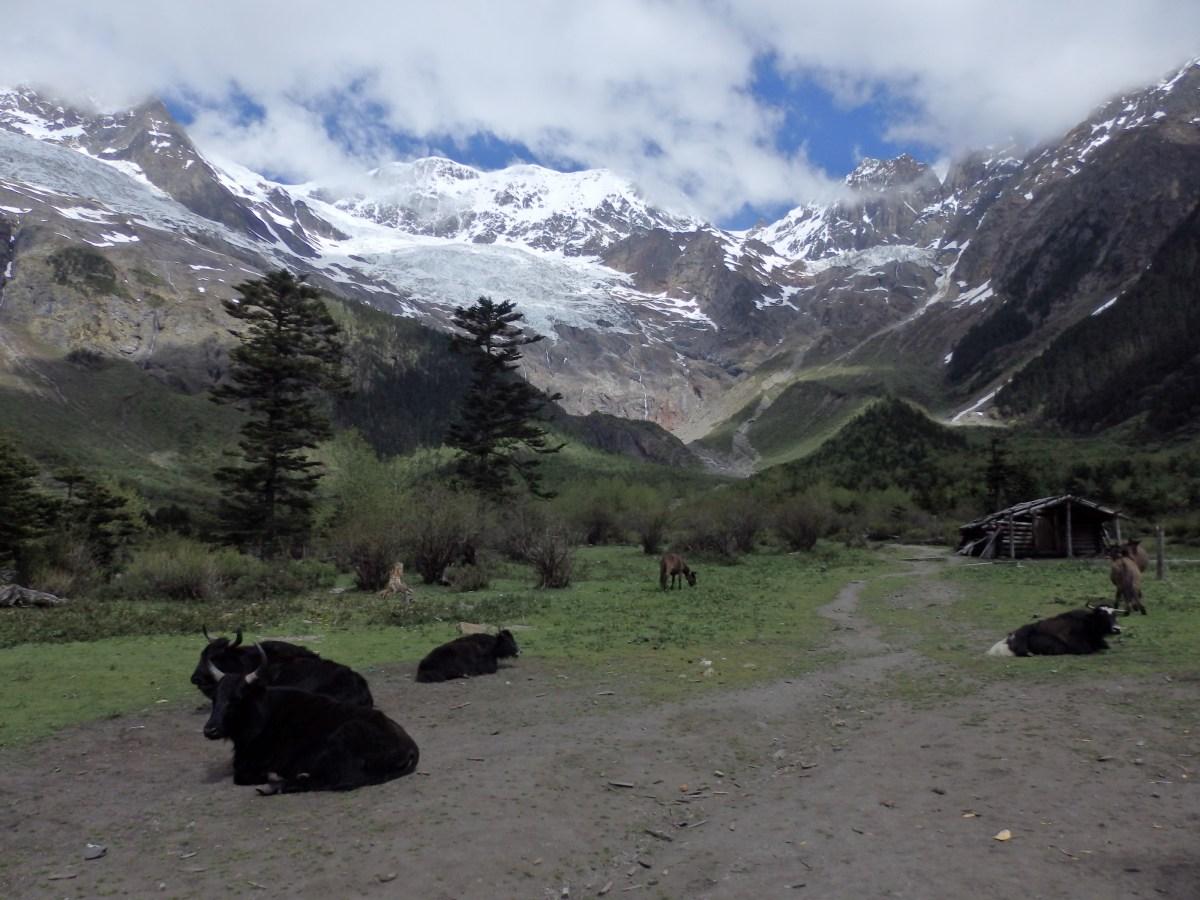 Yubeng - Hiking the Sacred Mountains of Yunnan
