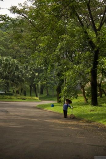 Photo walk The Green