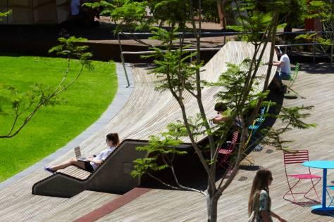 Caulfield Campus Green