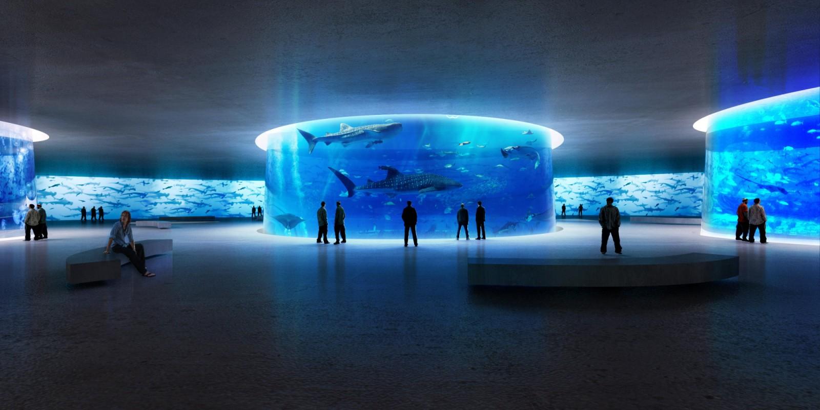 NYC Aquatrium