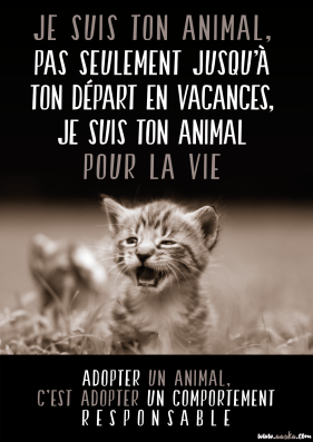 cause animale
