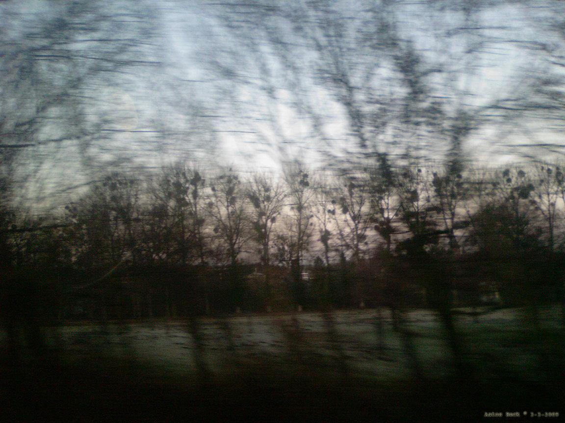 druids-mistletoe-heaven-by-aatos-beck-c2a9-3-3-2009