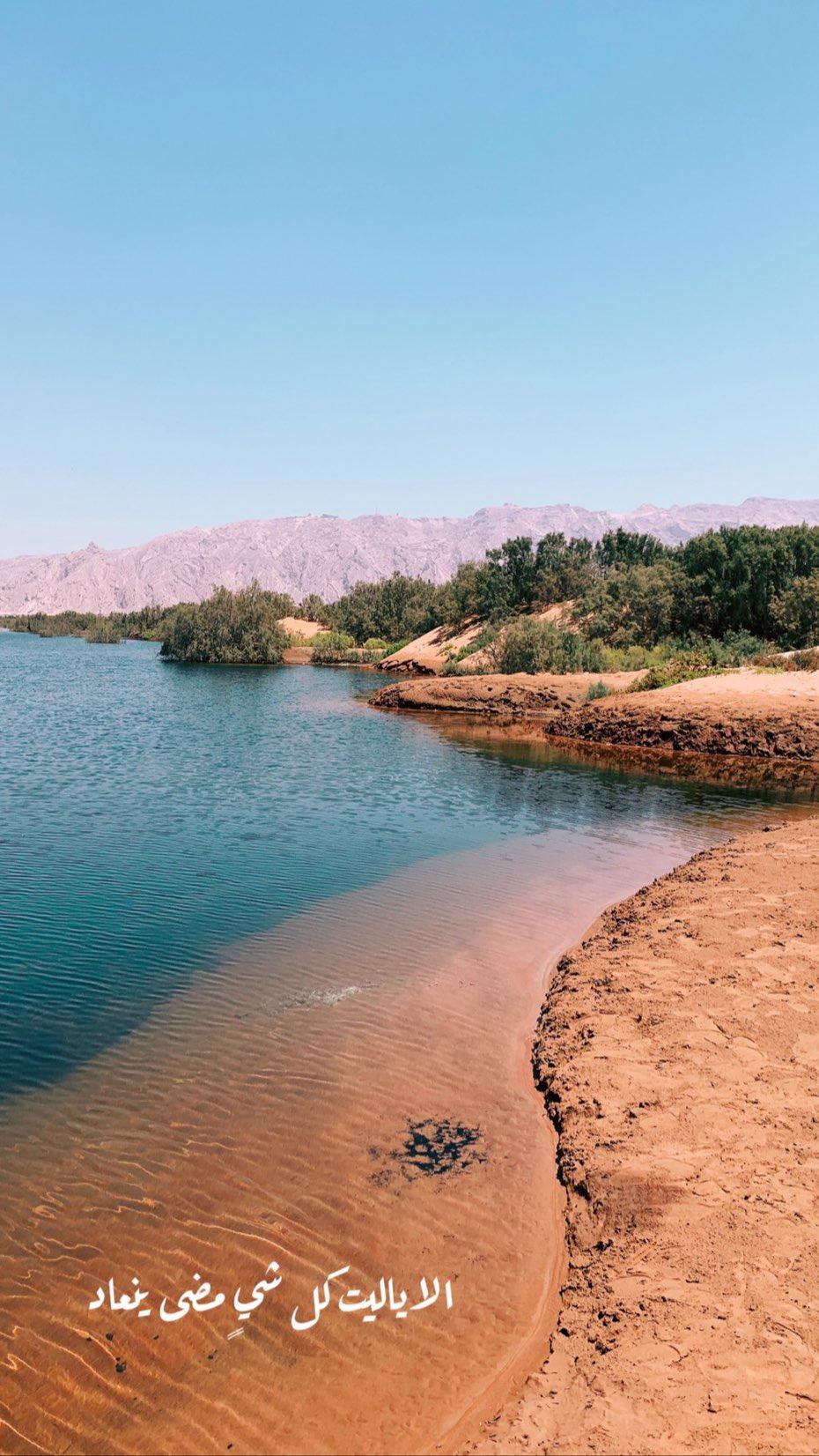 مبزرة و البحيرة في العين