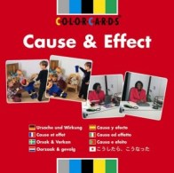 213-Cause & Effect