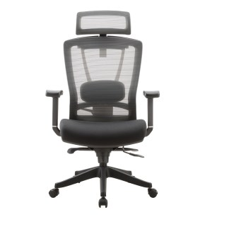 Effydesk Aery Mesh Ergonomic Office Chair