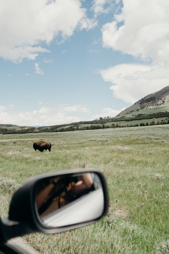Under Canvas Yellowstone