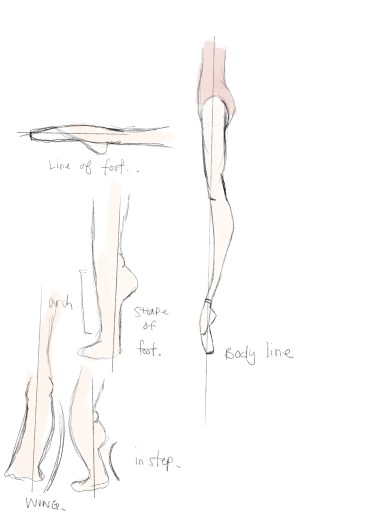 notes on body line