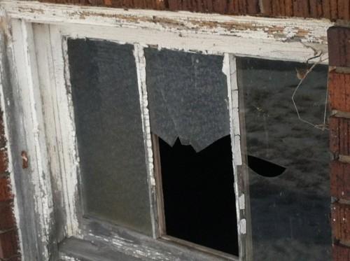 Norfolk Hospital Incurably Insane Windows 3.jpg PS