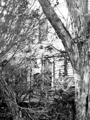 NE City House16.jpg PS