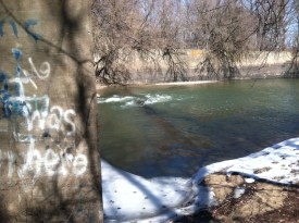 Abandoned Mill river2