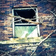 JFK Window CLose
