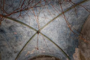 Wyndcliffe Roof Detail