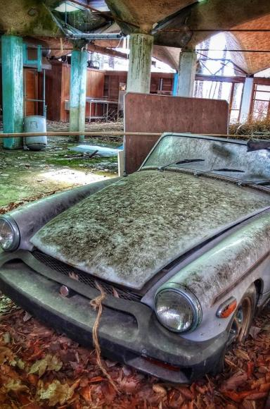 MG, seen in an abandoned camp, Pine Bush NY Photo by Liz Cooke