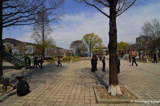 Park In Pyongyang