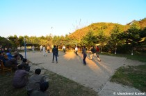 North Koreans And Foreigners Playing Volleyball
