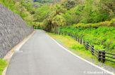 Side Road On Hachijojima