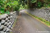 Tamaishigaki - Old Hachijojima Wall