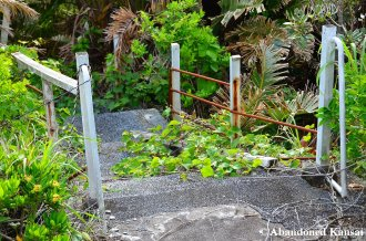 Overgrown Pool Path