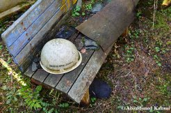 Abandoned Bench