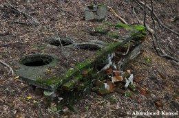 Abandoned Hearth