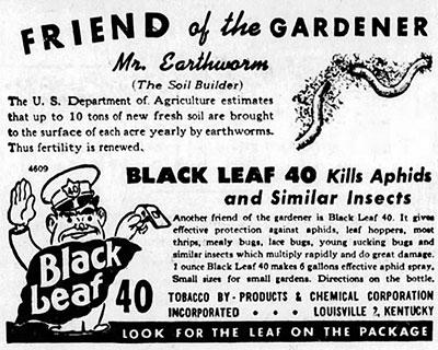 Black Leaf 40 Advertisment
