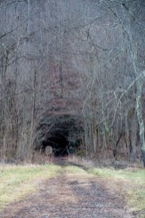 Hocking Valley Railway Campbell Tunnel