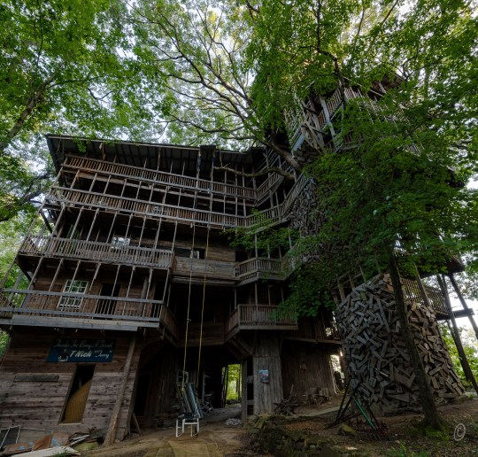 Horace Burgess's Treehouse